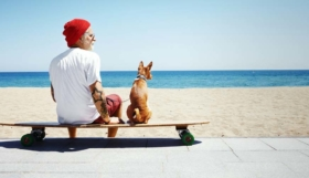 Photographie animalière: Un bon équipement et de la patience mènent au succès