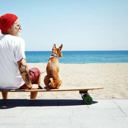 Question juridique : La photographie animalière et le droit à l'image