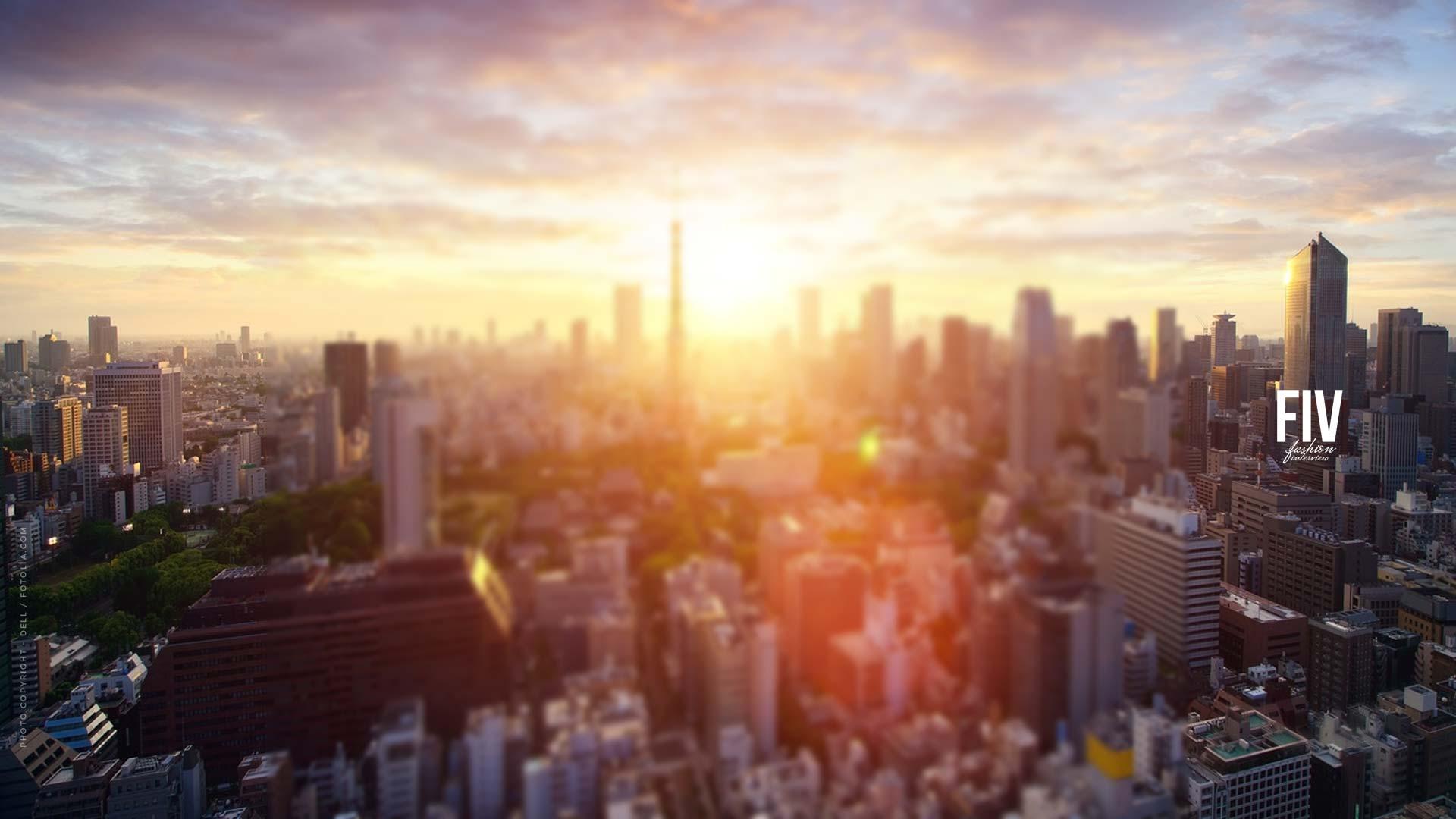 Immobilier de placement de capital - l'argent à long terme dans l'immobilier d'investissement de biens immobiliers