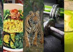 Motivé pour la nouvelle Année – Les meilleurs Exercices de fitness pour votre Maison