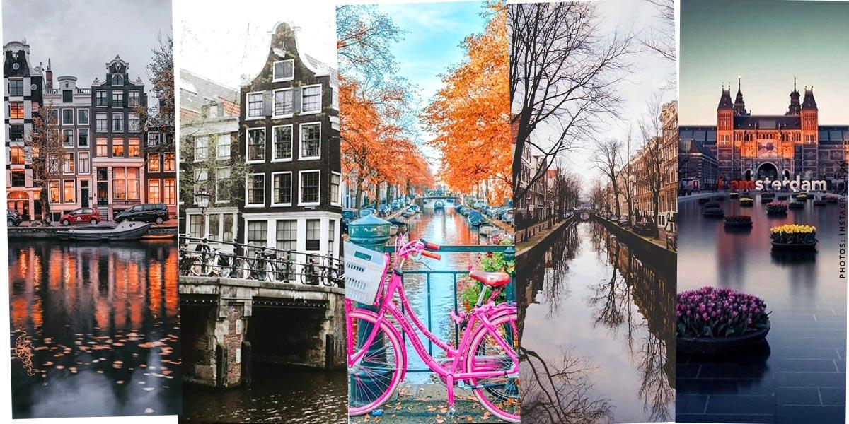 Pays-Bas: Vacances avec un enfant et un chien - Tourisme, hôtels et mer