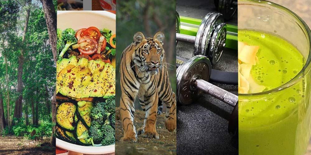 Motivé pour la nouvelle Année - Les meilleurs Exercices de fitness pour votre Maison