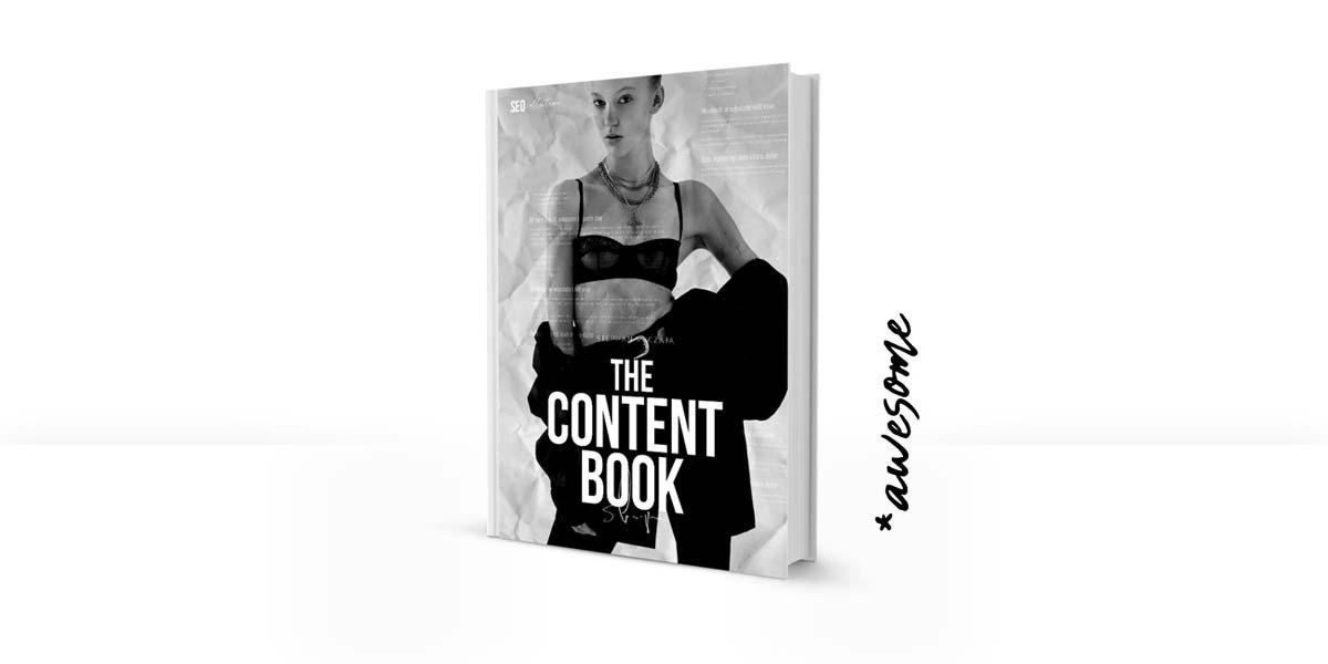 Le livre de contenu : Rédaction de bons textes SEO - Recommandation de livre