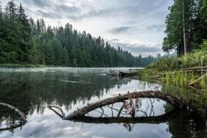 Chiemsee: Camping, Lieux d'intérêt & Bateau - Conseils pour vos vacances