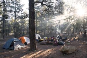 Forêt-Noire: Nature, bien-être & camping - Vacances & randonnée en montagne