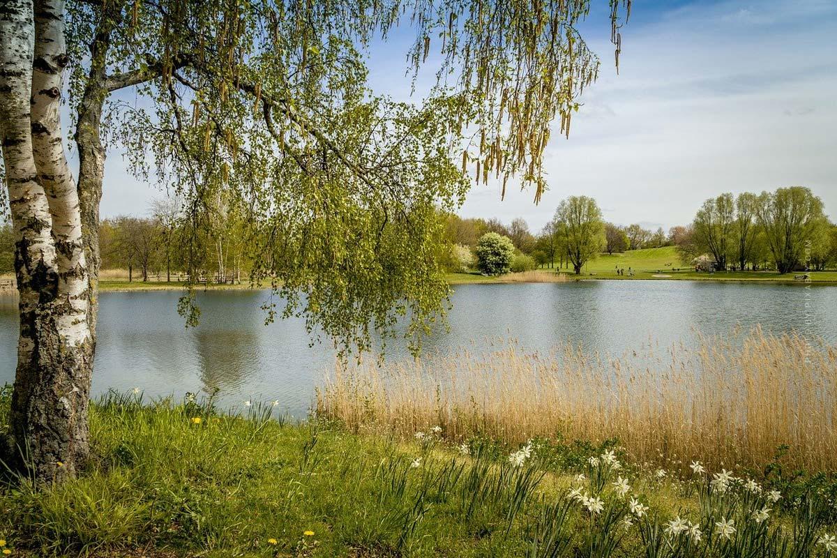 Camping Berlin : Breitehorn, Krossinsee & Co. - La nature dans la grande ville