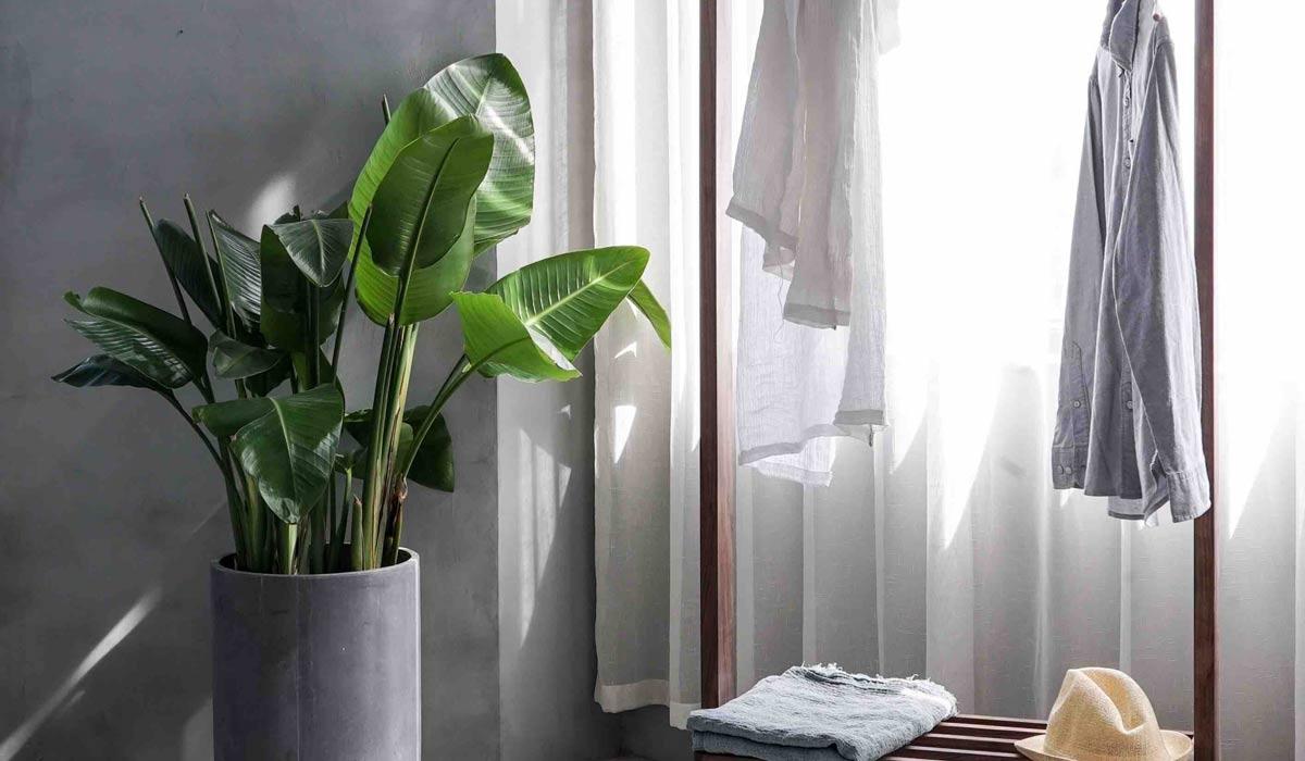 L'art de vivre minimaliste: des vêtements à la maison