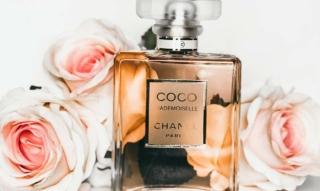Tendances beauté: quelles créations de parfums peut-on attendre cet hiver ? – y compris des conseils sur l'application & co.