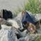 Chaussures d'été pour femmes : Sandales, séparateurs d'orteils, mules & Co – Top 5